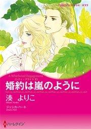 ハーレクイン 嵐のような恋セット vol.3